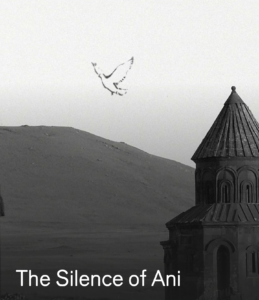 THE SILENCE OF ANI – Turkey – Francis Alys