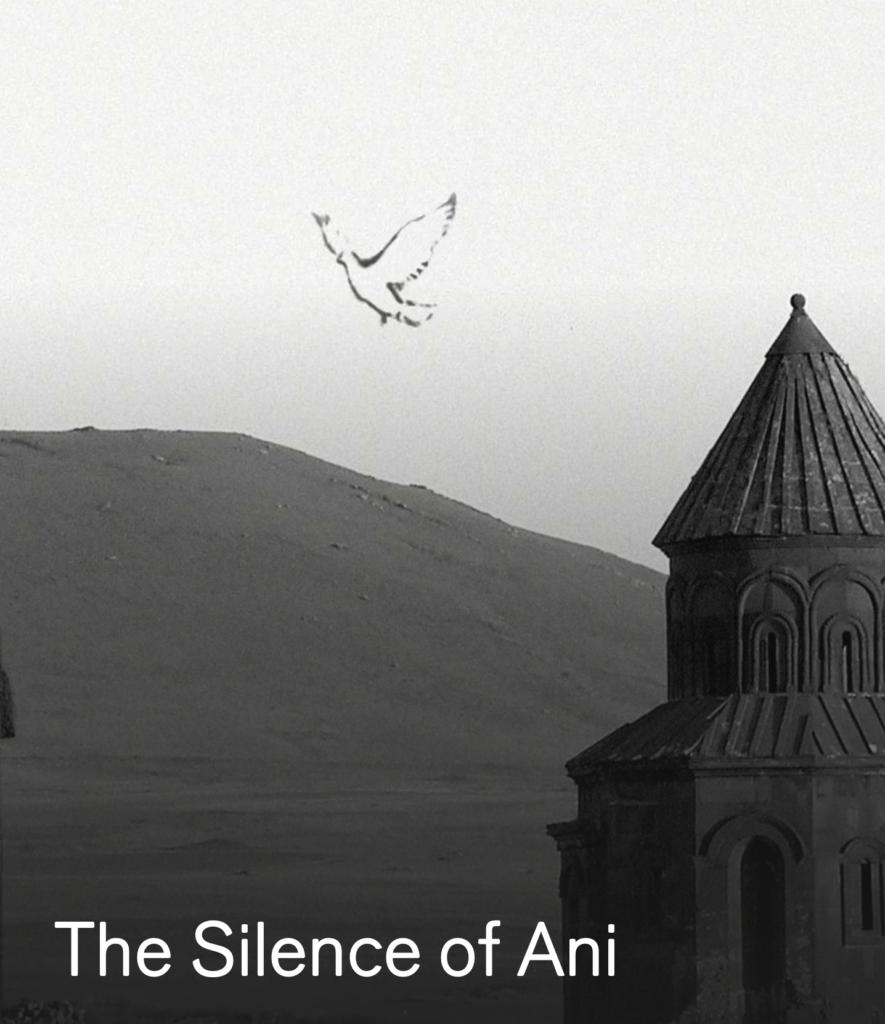 THE SILENCE OF ANI – Turkey – Francis Alys
